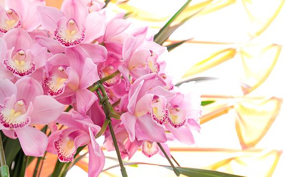 飾られた花